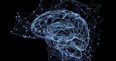 Computer-generated 'brain age' algorithm estimates how much time you've got left