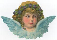 Grote poezieplaaten - Sita Deknatel - Picasa Webalbums