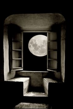 moonlight | by Obed U.
