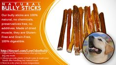 "Divine K9 100% Natural 6"" Beef Bully Sticks for Dogs - Free Range Bully Sticks"