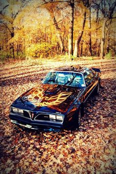 1977-78 Pontiac Trans Am Maintenance/restoration of old/vintage vehicles: the material for new cogs/casters/gears/pads could be cast polyamide which I (Cast polyamide) can produce. My contact: tatjana.alic14@gmail.com