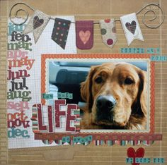 Cute Pet Page by Kim Holmes using Year.o.graphy from #SimpleStories