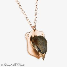 LOVED TO DEATH Gothic Victorian Taxidermy Memento Mori Couture Jewelry English House Sparrow Head Rose Gold Plaque Necklace