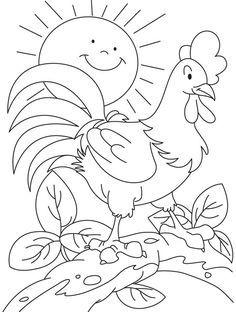 Mewarnai Gambar Ayam Jago Dengan Gambar Warna Kartun Gambar