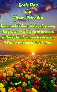 He Is Lord, Evening Quotes, Good Night Blessings, Goeie Nag, Angel Prayers, Good Night Quotes, Sleep Tight, Afrikaans, Inspirational Quotes