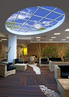 Biophilic design solutions for enclosed corporate environments create sustainable interiors for human occupancy.