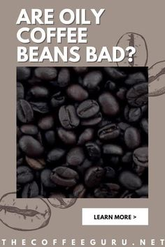 Oily coffee beans are not hard to deal with. You just have to understand the chemistry of the condition and the reason for oil coffee beans. This article discusses everything about dark oily coffee and whether you should avoid it. #oilycoffeebeans #coffeebeans #brewingoilycoffeebeans #shinycoffeebeans Types Of Coffee Beans, Fresh Coffee Beans, Arabica Coffee Beans, Coffee Uses, Great Coffee, Coffee Facts, Brewing Equipment, Coffee Talk, Coffee Plant