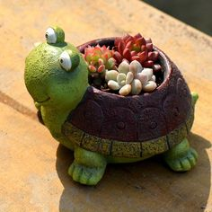 Cheap planters for succulents, Buy Quality cute planter directly from China decorating planters Suppliers: Cute Cartoon Turtle Planter for Succulents Decorative Desktop Flower Pot for Mini Bonsai Home Garden Decoration Succulent Pots, Succulents Diy, Planting Succulents, Flower Pot Crafts, Flower Pots, Potted Flowers, Flowers Garden, Spring Flowers, Garden Crafts