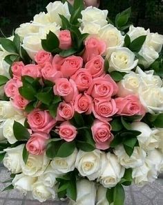 Discover recipes, home ideas, style inspiration and other ideas to try. Beautiful Flowers Garden, Amazing Flowers, Beautiful Roses, Pretty Flowers, Birthday Wishes Flowers, Happy Birthday Flower, Rose Flower Arrangements, Flower Box Gift, Good Morning Flowers