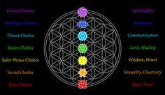 THE CHAKRA SYSTEM http://www.corespirit.com/the-chakra-system/ As an energy healer, the chakras of your patient will be of central importance to you as you work. Because the chakras are so important, and because you have begun channeling energy into them and sensing their condition by passing your hands over them, it is beneficial to have a basic...