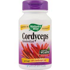 Cordyceps este ciuperca medicinala chinezeasca renumita pentru cresterea vitalitatii si a longevitatii.