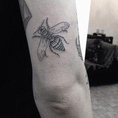 #vespa #wasp #insect #inseto #tattoo #tatuagem from romulopacheco