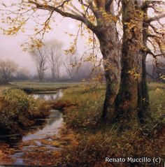 Oil paintings on panel by Renato Muccillo