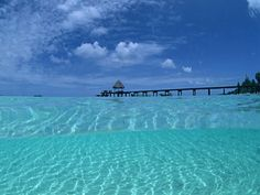 Seven Mile Beach, Grand Cayman. Truly the most beautiful water I have ever seen! travel-places