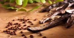Carob is frequently used as a substitute for chocolate because it can be made to taste and look similar to chocolate. Additionally, carob is often touted. Beneficios Do Chocolate, Ice Cream Science, Le Cacao, Diet Recipes, Healthy Recipes, Carob Recipes, Healthy Sweets, Kakao, Hot Chocolate