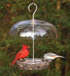 Bird House Kits Make Great Bird Houses Garden Bird Feeders, Bird House Feeder, Diy Bird Feeder, Garden Birds, Unique Bird Feeders, Garden Crafts, Garden Projects, Garden Art, Wild Birds Unlimited