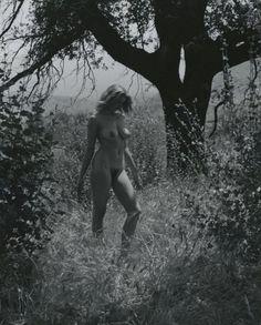Andre de Dienes 1950s