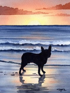 BOSTON TERRIER SUNSET Dog Watercolor ART PRINT Signed by Artist DJ Rogers ♥♥♥