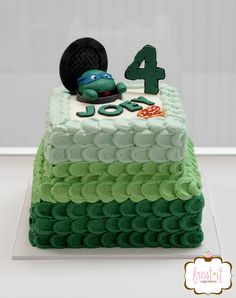 Teenage Mutant Ninja Turtle Cake with ombre buttercream Boys birthday cake
