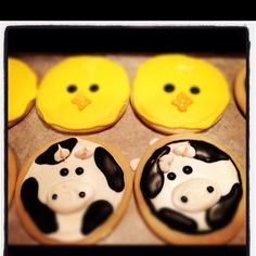 Chick and cow Farm animal themed birthday cookies Www.thehotpinkbox.com