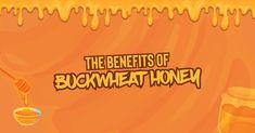 THE BENEFITS OF BUCKWHEAT HONEY Honey And Co, Pure Honey, Natural Honey, Raw Honey, Honey Cosmetics, Honey Mead, Different Bees, Healthy Blood Pressure, Creamed Honey