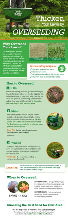 Bring your lawn back to life by learning how to overseed a lawn. Overseeding is a practice that helps maintain your lawn's long-term health and vibrancy.