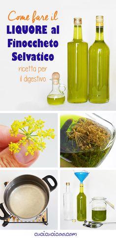 Come fare il liquore al finocchietto selvatico (ricetta per il digestivo) - Cucicucicoo