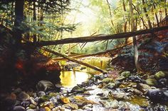 Fallen Trees III, Watercolor ©John Hulsey