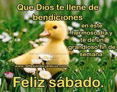 Feliz sábado, que Dios te llene de bendiciones en éste hermoso día.