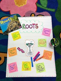 We had so much fun learning all about plants! I just love this spring time unit. Here are some of the things we did in our plant unit. Time Unit, All About Plants, Fun Learning, Spring Time, Roots, Lettering, How To Plan, March, Teaching