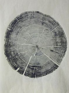 tree trunk x lines