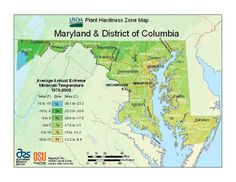 Maryland zones for planting/growing.  When buying new plants, this chart will help you determine what will be hardy in your area.  If you're planning on growing it as an annual only, just stick to warmer days!