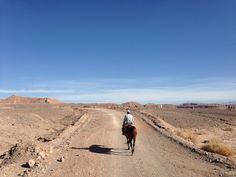 7 Dinge, die man in der Atacama Wüste gemacht haben muss