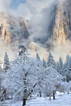 """Yosemite National Park"" by HiDickBiker on Flickr - Winter at Yosemite National Park, California"