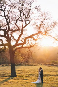 Weddings, sunset