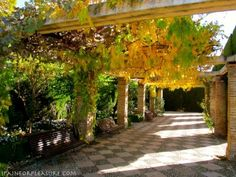 The Alhambra In Autumn | Spain For Pleasure - COURTYARD AND PERGOLA IN LOWER GENERALIFE GARDENS