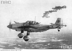 """Junkers Ju 87 D """"Stuka"""" above Kandałaksza '44"""