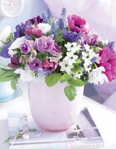 kuhles stiefmuetterchen die sympathischen fruehblueher große bild oder bfcdedcce flower arrangements