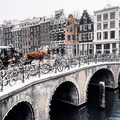 Called by lots of as Holland, the city of Amsterdam is the most gone to center in the Netherlands. Recent data have actually shown that more than million tourists are pertaining to check out Amsterdam per year. Amsterdam Winter, Visit Amsterdam, Amsterdam City, Amsterdam Travel, Amsterdam Netherlands, Amsterdam Christmas, The Netherlands, Amsterdam Sights, Amsterdam Bridge