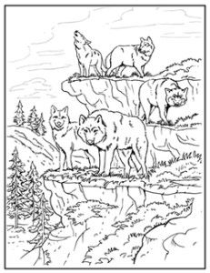 Printable Free Wolf Coloring Pages For Adults Desenhos Para Piro