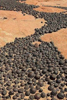 Moqui Marbles, naturally occurring iron oxide concretions that arise from navajo sandstone. Address: Utah 84737 #Geology  Amazing Geologist