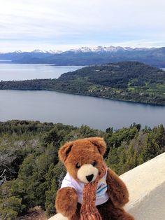 Der Urlaubär in Bariloche in der argentinischen Schweiz ... #urlaubär