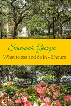 Savannah Georgia - what to see and do in the city with 48 hours. The historic district of Savannah is filled with amazing architecture, beautiiful squares and georgious landmarks to visit in this charming Southern city. Check out my top must do's for visi Visit Savannah, Savannah Georgia, Savannah Chat, Historic Savannah, Oh The Places You'll Go, Places To Travel, Travel Destinations, Travel Things, Tybee Island
