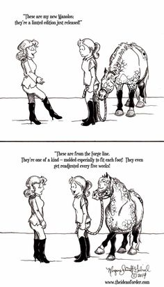 Just another example of an Equestrian's priorities - Horses Funny - Funny Horse Meme - - Just another example of an Equestrian's priorities The post Just another example of an Equestrian's priorities appeared first on Gag Dad. Funny Horse Memes, Funny Horse Pictures, Funny Horses, Cute Horses, Pretty Horses, Horse Love, Beautiful Horses, Funny Animals, Beautiful Cats