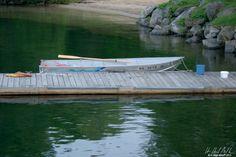 Afloat | H Hugh Miller #photography #dock #art #artist #water #fineart #sealife