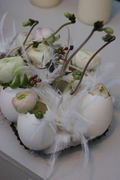 .Beautifu display, but not sure the effect would be the same with our Medium Free Range egg shells.