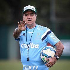 Palmeiras - Marcelo Oliveira