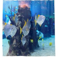 La Mer in Neuwied – Dinner unter Wasser www. Ocean Pictures, Pictures Images, Free Images, Fluorescent Light Covers, Underwater Animals, Marine Environment, Custom Shower Curtains, Blue Pearl, Visual Effects