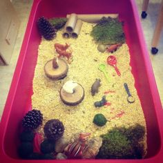 woodland forest themed sensory tub; pine cones, birdseed, wood tree blocks, tubes, scoops, woodland animals