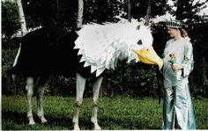 I made this costume for a friend. It was surprising that the horse put up with it. he even fell asleep while wearing it Elephant Costume for Horse Horse Halloween Ideas, Horse Halloween Costumes, Pet Costumes, Costume Ideas, Costume Contest, Horse Fancy Dress, Eagle Costume, Barbie Horse, Elephant Costumes